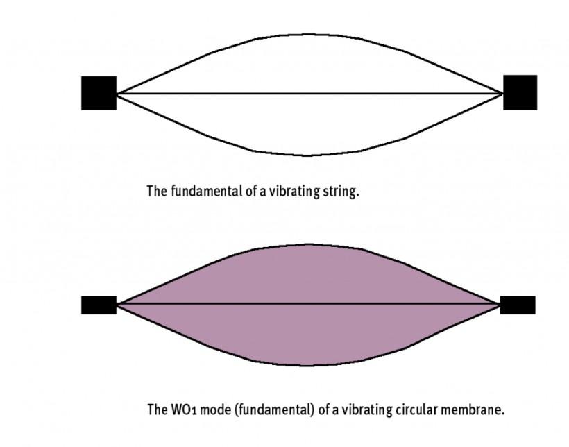 揭秘合成器(2):解析打击乐器